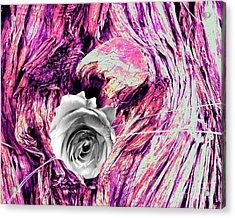 Heart Bark Neptune Rose Acrylic Print by Marlene Rose Besso