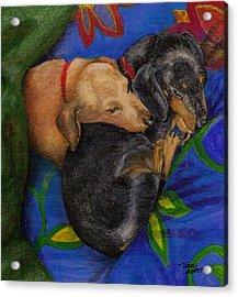 Heart Dogs Acrylic Print