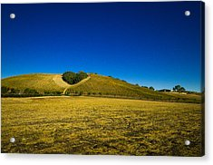 Heart Hill 3 Acrylic Print by Connie Cooper-Edwards