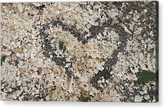 Heart In Wood Shavings Acrylic Print