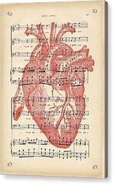 Heart Music Acrylic Print by Georgia Fowler