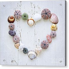Heart Of Seashells And Rocks Acrylic Print