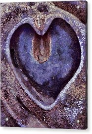 Heart Of Stone Acrylic Print by Gun Legler