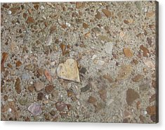 Acrylic Print featuring the photograph Heart Of Stone by Fortunate Findings Shirley Dickerson