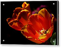 Heart Of The Flower Acrylic Print
