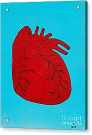 Heart Red Acrylic Print by Stefanie Forck
