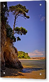 Acrylic Print featuring the photograph Heart's Desire Beach by Janis Knight