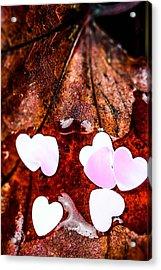 Hearts On Leaf Acrylic Print