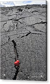 Heartshape In Crack Of Cooled Pahoehoe Lava Acrylic Print by Sami Sarkis