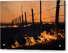 Acrylic Print featuring the photograph Heat by Scott Bean