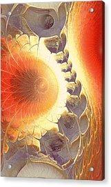 Heat Shield Acrylic Print by Anastasiya Malakhova
