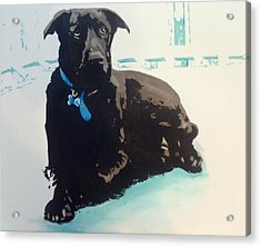 Heathers Dog Acrylic Print