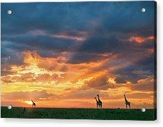 Heaven And Earth Acrylic Print by John Fan