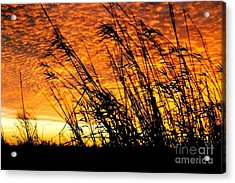 Sunset Heaven And Hell In Beaumont Texas Acrylic Print by Michael Hoard