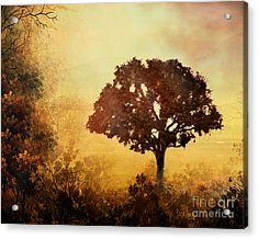 Heavenly Dawn Acrylic Print by Peter Awax
