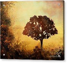 Heavenly Dawn Acrylic Print by Bedros Awak