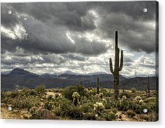 Heavenly Desert Skies  Acrylic Print