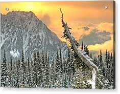 Heavenly Acrylic Print by Jeff Cook