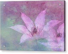 Heavenly Petals Acrylic Print by Betty LaRue