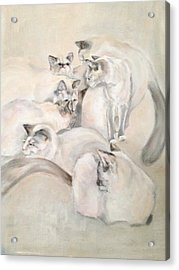 Heavenly Puffs Acrylic Print by Janet Felts
