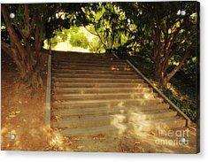 Heavenly Stairway Acrylic Print by Madeline Ellis