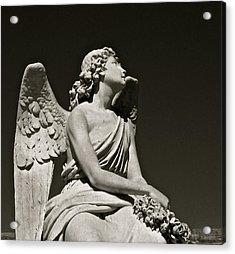 Heaven's Gaze Acrylic Print