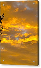 Heaven's Sky Acrylic Print by Andrea Dale