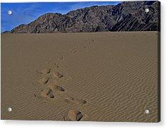 Heavy Feet Acrylic Print by See My  Photos