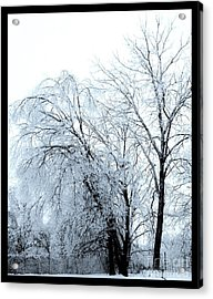 Heavy Ice Tree Redo Acrylic Print by Marsha Heiken