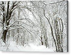 Heavy Snow Country Road Acrylic Print by Thomas R Fletcher