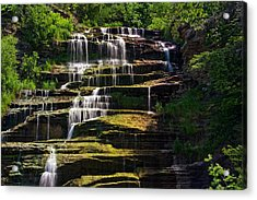 Hector Falls Acrylic Print by Dave Files