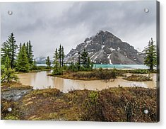 Hector Lake, Banff National Park Acrylic Print