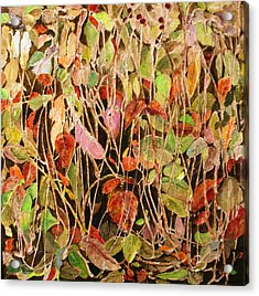 Hedge Brake Acrylic Print