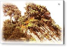 Hehuanshan Acrylic Print