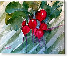 Heirloom Radishes Acrylic Print by Sandra Stone