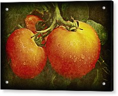 Heirloom Tomatoes On The Vine Acrylic Print by Chris Berry