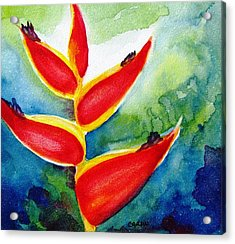 Heliconia - Abstract Painting Acrylic Print by Carlin Blahnik