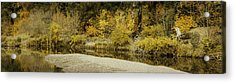 Hello Autumn Panorama Acrylic Print by Diane Schuster