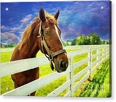 Hello From The Bluegrass State Acrylic Print