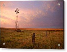 Hello Kansas Acrylic Print by Shirley Heier