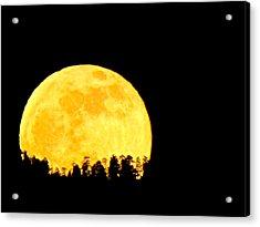 Hello Moon Acrylic Print by Feva  Fotos