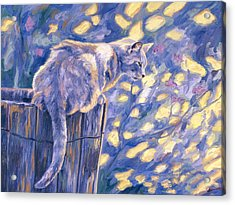 Hemingway Cat Acrylic Print by Lucie Bilodeau