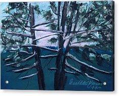 Hemlocks Snowy Morning Acrylic Print by Bernadette Kazmarski