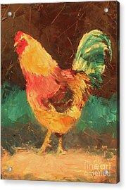 Hen In Vermont Acrylic Print