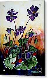 Hepatica After A Design By Anne Wilkinson Acrylic Print by Veronica Rickard