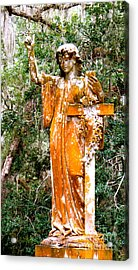 Acrylic Print featuring the photograph Her Guardian Angel by Joy Hardee
