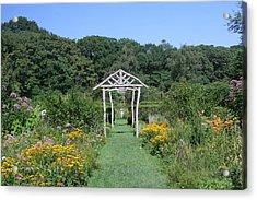 Acrylic Print featuring the photograph Herb Garden by Karen Silvestri