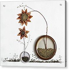 Herbarium...2 Acrylic Print
