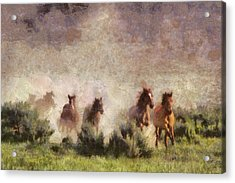 Acrylic Print featuring the painting Herd Of Wild Horses by Georgi Dimitrov
