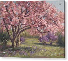 Here's The Spring Acrylic Print by Lucie Bilodeau